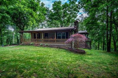 Pickens County Single Family Home For Sale: 11117 Highway 53