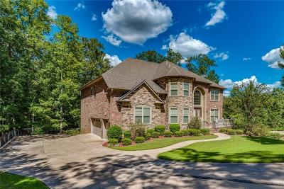 Ellenwood Single Family Home For Sale: 4568 Lake Vista Circle