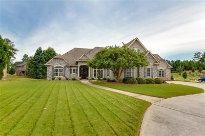 Henry County Single Family Home For Sale: 1009 Pampas Way