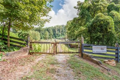 Pickens County Single Family Home For Sale: 1790 Highway 136 E
