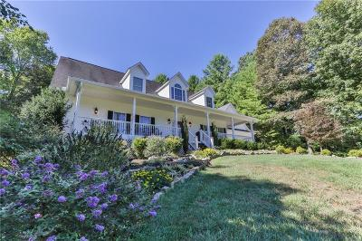 Ellijay Single Family Home For Sale: 371 Owensby Mill Drive