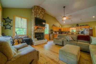 Ellijay Single Family Home For Sale: 310 Dogwood Ridge