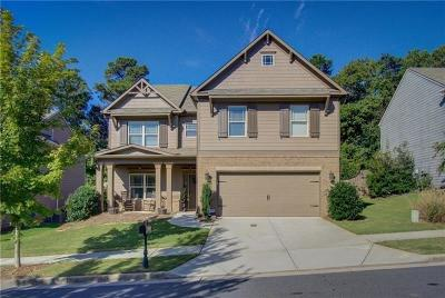 Canton Single Family Home For Sale: 216 Manous Way