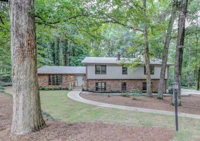 Stone Mountain Single Family Home For Sale: 1957 Gunstock Drive