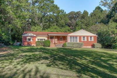Stone Mountain Single Family Home For Sale: 457 Martin Road