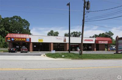 Hall County Commercial For Sale: 227 Atlanta Highway