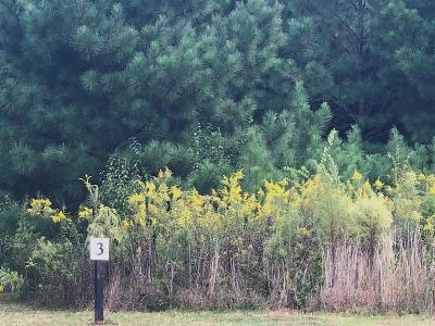 Lawrenceville Residential Lots & Land For Sale: 1202 Alcovy Road