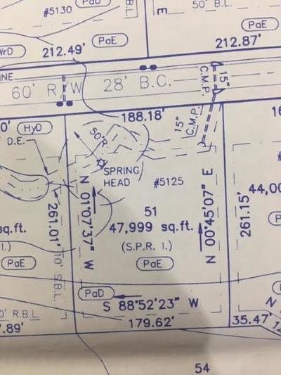 Cumming Residential Lots & Land For Sale: 5125 Hyde Way Trail
