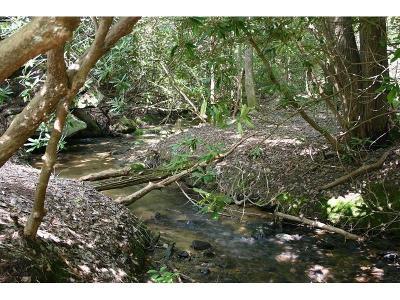Canton Land/Farm For Sale: Lower Burris Road