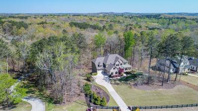 Canton Single Family Home For Sale: 850 Old Lathemtown Road