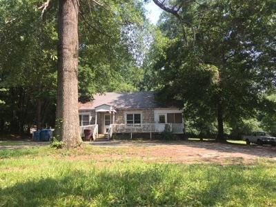 Alpharetta Single Family Home For Sale: 390 Academy Street