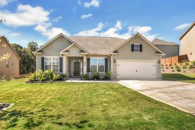 Acworth Single Family Home For Sale: 160 Hickory Pointe Drive