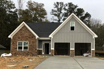 Austell Single Family Home For Sale: 4075 Brightmore Drive