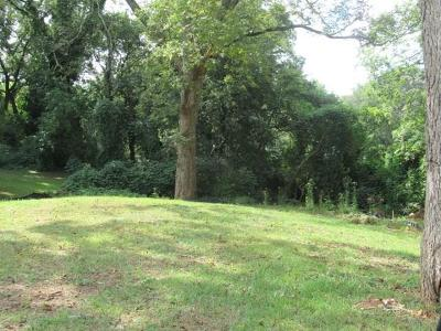Residential Lots & Land For Sale: 58 Meldon Avenue SE