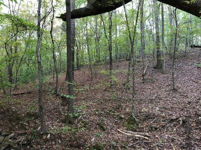 Douglas County Residential Lots & Land For Sale: 3312 S McKoy Road