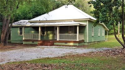Newnan Single Family Home For Sale: 439 Old Carrollton Road