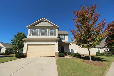 Hiram Single Family Home For Sale: 276 Highland Falls Boulevard