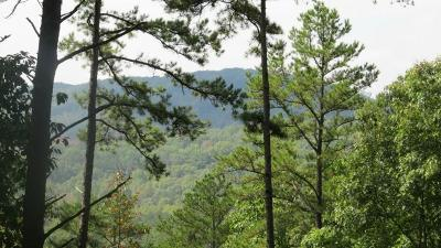 Cartersville Residential Lots & Land For Sale: 27 Sunset Ridge SE