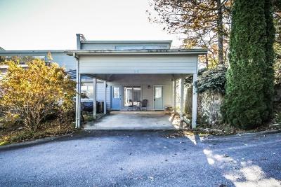 Rabun County Condo/Townhouse For Sale: 1563 Screamer Drive #101