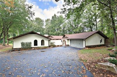 Sandy Springs Single Family Home For Sale: 425 Mount Vernon Highway