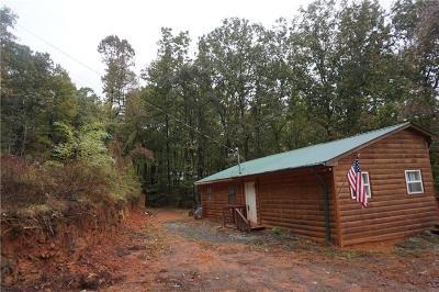 Ellijay Single Family Home For Sale: 620 Flat Branch Trail