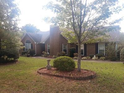 Hampton Single Family Home For Sale: 13885 Panhandle Lane