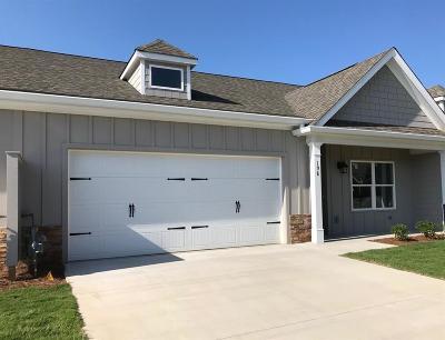 Lumpkin County Condo/Townhouse For Sale: 198 Village Drive