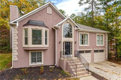 Acworth Single Family Home For Sale: 2100 Tycoon Drive NW