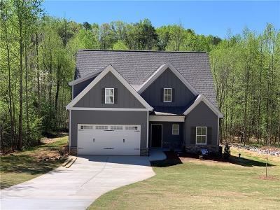 Dawsonville Single Family Home For Sale: 65 Glen Pine Court