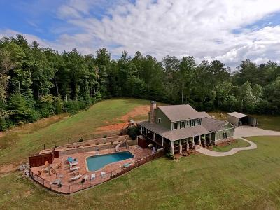Ellijay Single Family Home For Sale: 8644 Chatsworth Highway