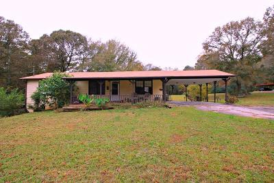 Henry County Single Family Home For Sale: 135 Little Mountain Road