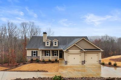 Dawsonville Single Family Home For Sale: 260 Old White Oak Trail
