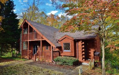 Dawsonville Single Family Home For Sale: 15 N Chestatee Point