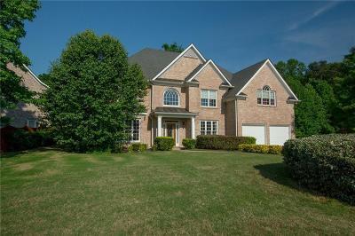 Snellville Single Family Home For Sale: 1845 Brandie Elaine Avenue