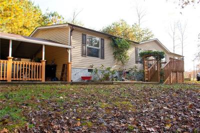 Ellijay Single Family Home For Sale: 853 Parksbrook Road