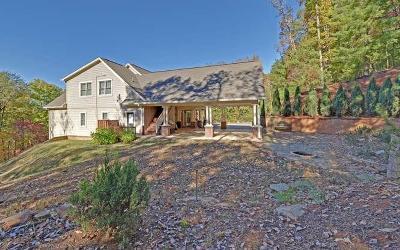 Ellijay Single Family Home For Sale: 221 Laurel Glen Drive
