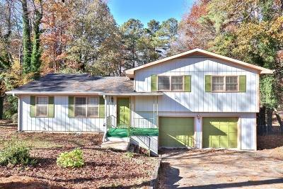 Marietta Single Family Home For Sale: 843 Mary Ann Drive NE