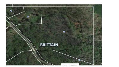 Douglas County Residential Lots & Land For Sale: Brittain Road