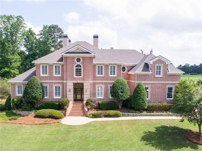 Henry County Single Family Home For Sale: 425 Mallard Lane