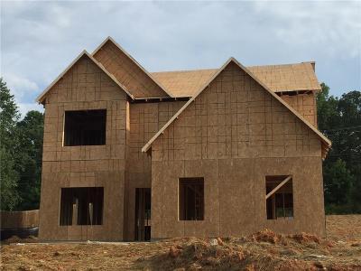Douglasville Single Family Home For Sale: 159 Ridge Brooke Lane