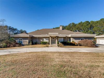 Snellville Single Family Home For Sale: 1391 Green Turf Drive
