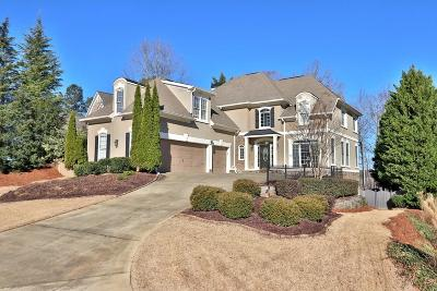 Canton Single Family Home For Sale: 691 Lake Overlook Drive