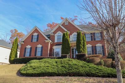 Suwanee Single Family Home For Sale: 507 Streamwood Ivy Trail