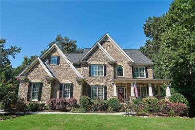 Forsyth County Single Family Home For Sale: 6180 Overlook Park Drive
