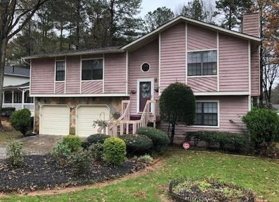 Lawrenceville Single Family Home For Sale: 2848 Porter Drive