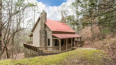 Ellijay Single Family Home For Sale: 166 Stegall Mill Trail