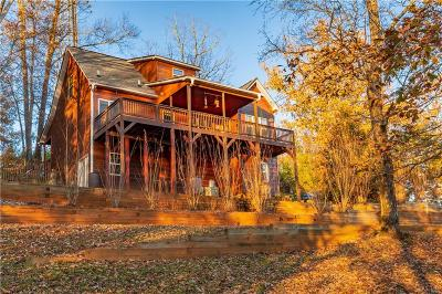 Ellijay Single Family Home For Sale: 740 Drena Drive