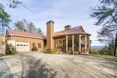 Ellijay Single Family Home For Sale: 762 Pettit Ridge Road