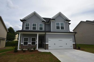 Cartersville Single Family Home For Sale: 11 Griffin Mill Drive NW