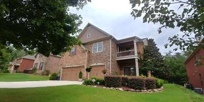 Suwanee Single Family Home For Sale: 1620 Winning Colors Court